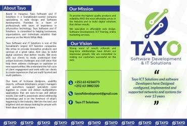 Tayo Software Developments